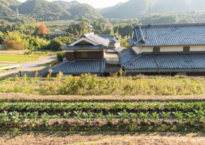 2017_Japan_Shoko_Morimoto_Farm_2060